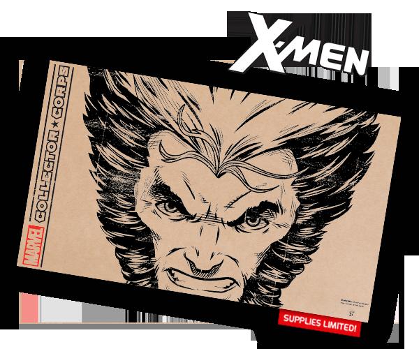 Příští téma boxu - X Men